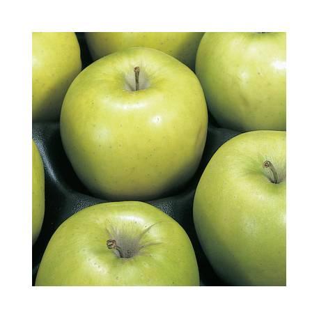 GEFU Керамично ренде за плодове и зеленчуци FRUTTARE