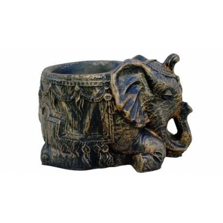 Саксия слонче, д50 х ш29 х в33