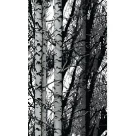 Самозалепващо фолио 45х200 см, мотив Бреза