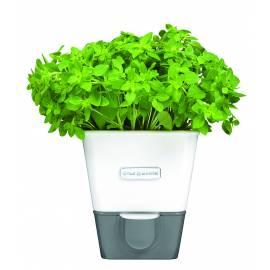 Imagén: Самополиваща се кашпа за зелени подправки или цветя COLE & MASON