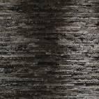 Фототапет Birken Rinde, 8 части, 368x254 см