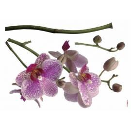 Декоративен стикер Орхидея, 3 части, 100х70 см