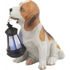 Соларна лампа - Куче