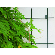 Решетка за пълзящи растения Bellissa, 150х45 см, зелена