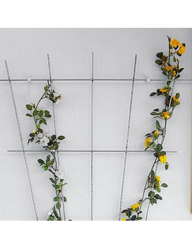 Решетка за рози Bellissa, ветрилообразна, поцинкована, 150х75 см
