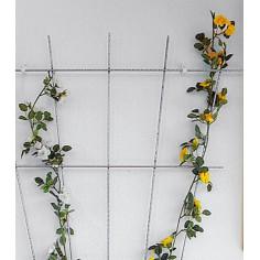 Държач за рози Bellissa, ветрилообразен, 150х75 см, бял