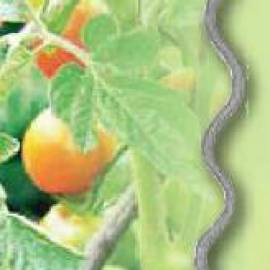 Стоманенo колче за растения - спирала, 180 см
