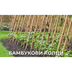 Кол за домати PLAIN BAMBOO CANE 2.10 м, бамбук