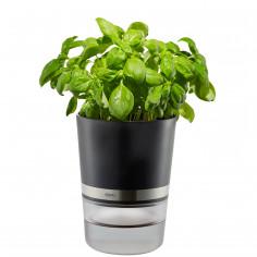 """Самополиваща се кашпа за зелени подправки или цветя """"BOTANICO"""""""